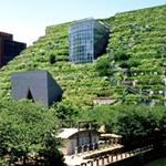 ACROS Fukuoka International Hall – Emilio Ambasz