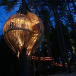 10 Impresionantes casas en los árboles