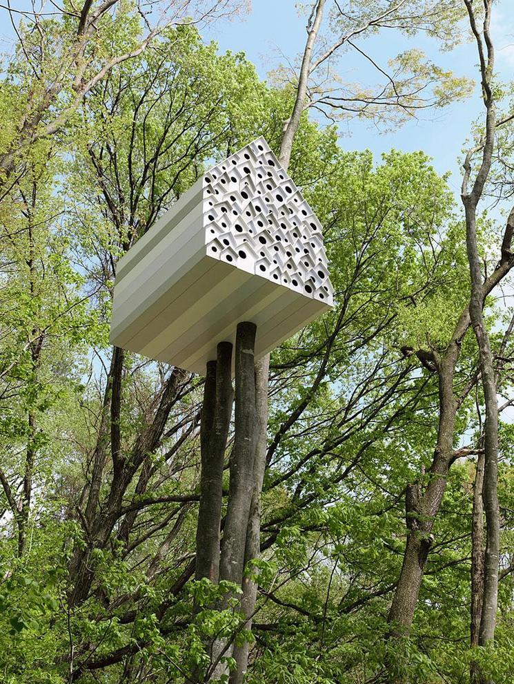 esta modernsima casa en los rboles nos ofrece la posibilidad de mirar en el interior de la vida de los pjaros la casa est dividida en dos partes por
