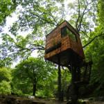 casa en arbol diseño