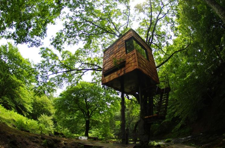 Casas en los árboles por Takashi Kobayashi
