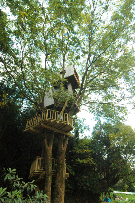 Arquitectura casas en los rboles por takashi kobayashi - Casas en los arboles girona ...