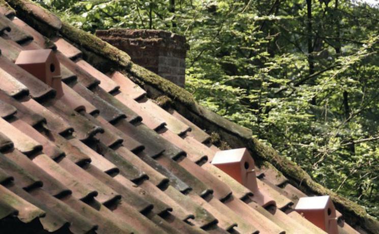 Una casa para p jaros en una teja por klaas kuiden - Casa para pajaros ...