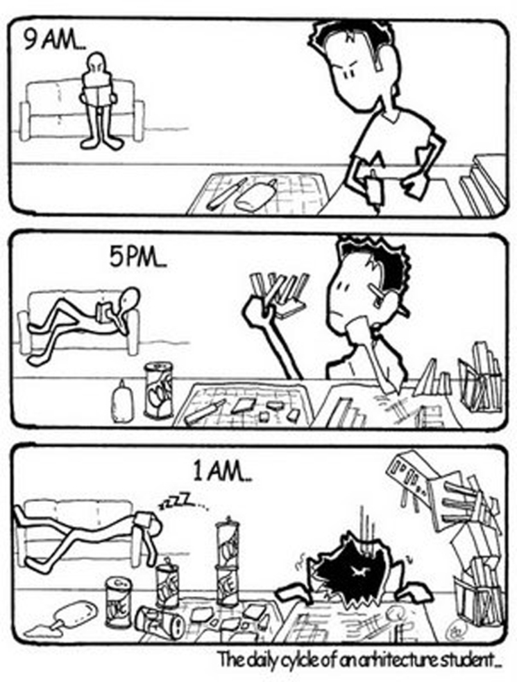 ciclo estudiante arquitectura