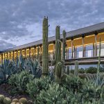 Cactus y la arquitectura resiliente