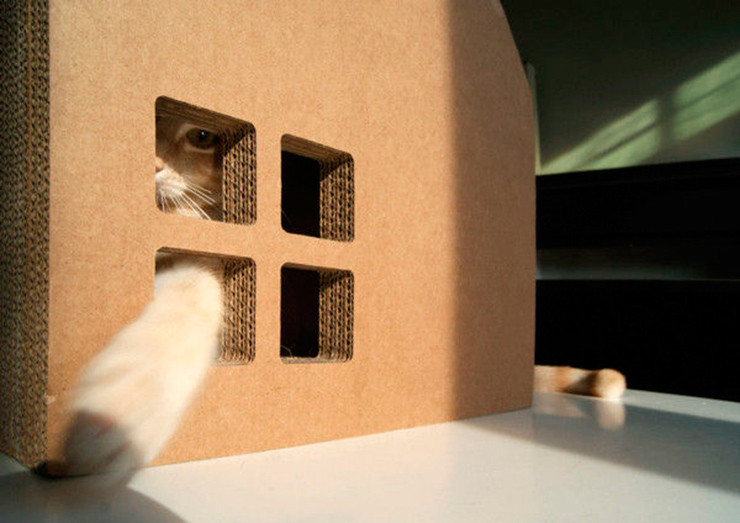 Krabhuis-casa-carton-gato