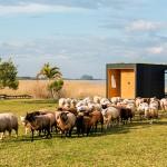 Minimod casa prefabricada minimalista