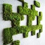 musgo graffiti verde