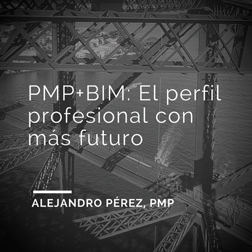 Pmp-bim-perfil-profesional-futuro-arquitectos