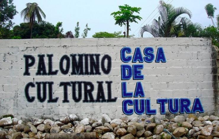 Palomino cultural construyendo sociedad