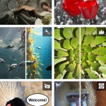 Retoca tus fotografías con Adobe Photoshop Express Online