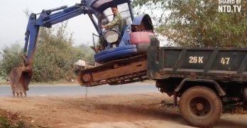 Vídeos de excavadoras en youtube, pericia al volante