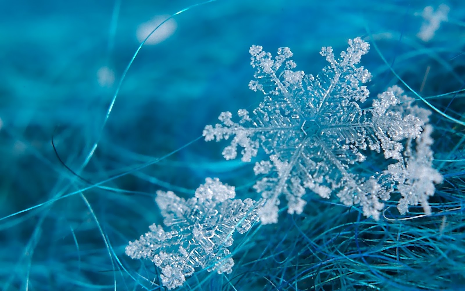 los copos de nieve-hexagonos ceramicos-ceramica a mano alzada